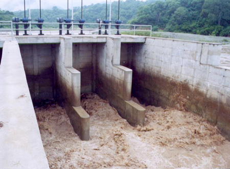 Comprar Hydraulic gates for hydroelectric projects