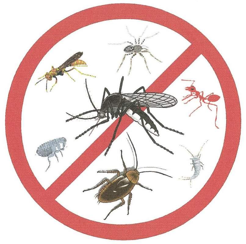 Comprar Insecticidas