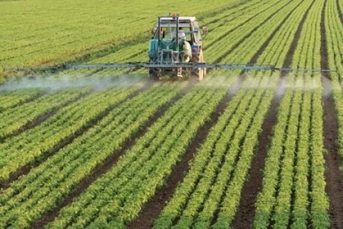 Comprar Nitrato de Potasio Cristalizado