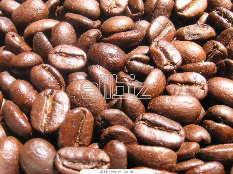 Comprar Cafe en granos