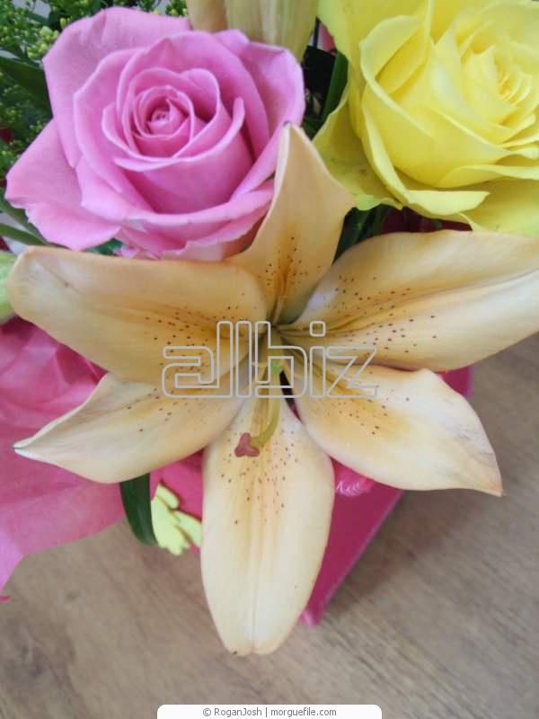 Comprar Arreglos florales