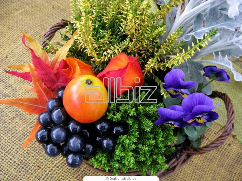 Comprar Arreglos de flores artificiales