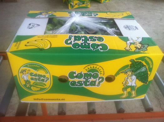 Comprar Ecuadorian bananas