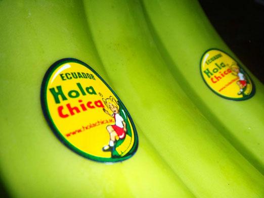 Comprar Cavendish banana