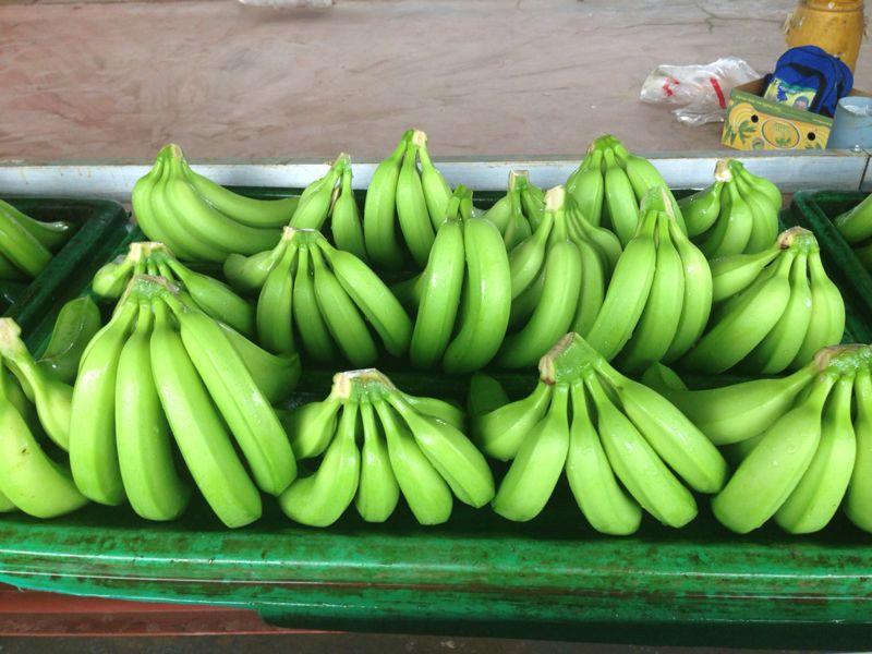 Comprar Cavendish, banana