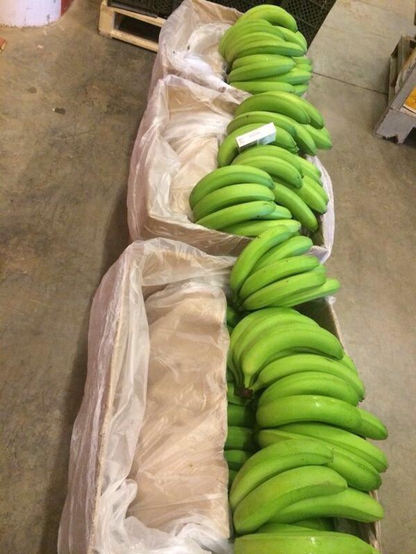 Comprar Banano