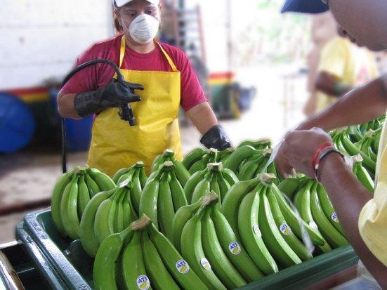 Comprar Бананы