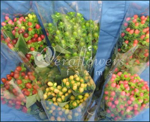 Kjøp Buketter av blomster