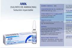 AMK (sulfato de amicacina)