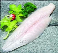 Filete de Pescado Congelado