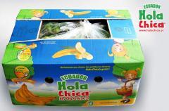 Hola Chica & Como Esta? Ecuadorian Bananas