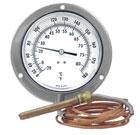 Termometros Actuados por Gas