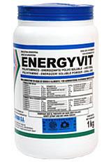 Energyvit Polivitaminico - Energizante de Alta