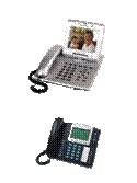 Teléfonos IP Empresariales