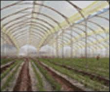 Tubería Estructural de Acero Galvanizado de Ideal