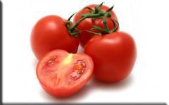Semillas de tomates Valentin