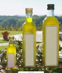 Aceite de oliva Arbolito