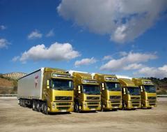 Chasis y suspencion (Scania, Volvo, Mercedec Benz,