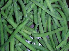 Green haricot