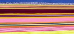 Tejido Crochet / Composición Nylon – lycra y