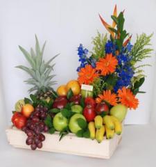 Corral de frutas 2