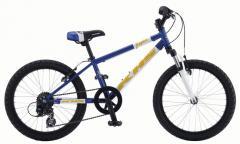 Bicicleta para niños entre 6 y 12 años Raptor