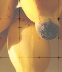 Escamas de Banano Confoco®