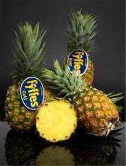 Fyffes Pineapples
