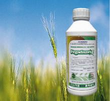 Herbicida difenil ether Galigan 240 EC