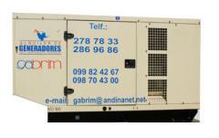 Generadores desde 1 hasta 1000 KVA.