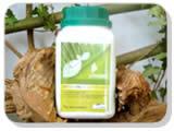 Estimulante de la fotosíntesis CO2 Foliar (único