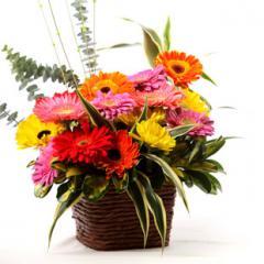 """Flores en canasta """"Arco Iris de"""