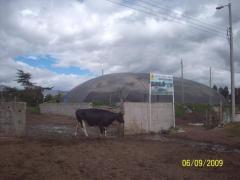 Biodigestores para la producción de biogas