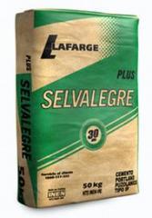 Cemento Hidráulico compuesto tipo IP Selvalegre