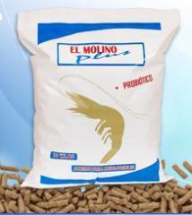 Alimento para larvas Molino Plus