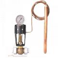 Válvula reguladora de Temperatura