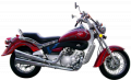 Motocicleta Sport