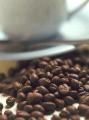 Café Arábigo lavado, Arábigo natural y Robusta