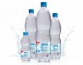 """Agua polable """"Big Aqua Vital"""""""