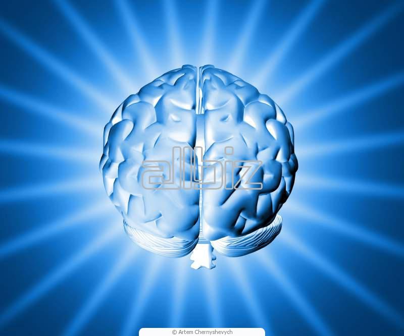 Pedido Propiedad Intelectual