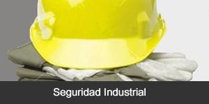 Pedido Seguridad Industrial y de Medio Ambiente