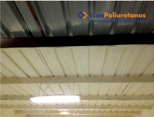 Pedido Poliuretano Spray - Aislamiento Térmico para Techos y Muros – Salinas