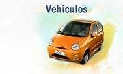 Pedido Seguros de Vehículos Asistencia Total, Sistemas de protección vehicular.