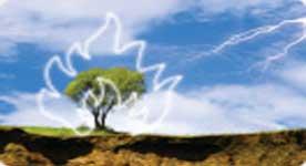 Pedido Seguros de Incendio y eventos de la naturaleza