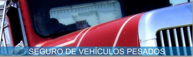 Pedido Póliza de vehículos pesados de carga y de pasajeros