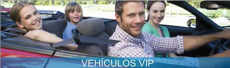 Pedido Seguro Vehicular Vip