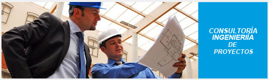 Pedido Consultoría e Ingeniería de Proyectos