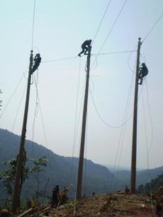 Pedido Redes de Distribucion