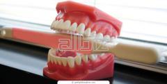 Rehabilitación oral ortodoncia