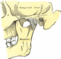 Problemas de la Articulación Temporo-Mandibular (ATM)